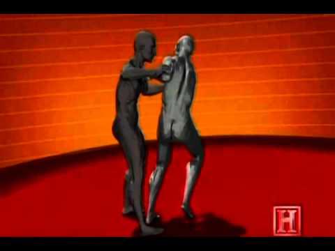 Биомеханика движений в дзюдо (ВИДЕО)